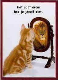 kijk eerst zelf goed in de spiegel
